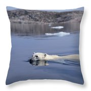 Polar Bear Swimming Wager Bay Canada Throw Pillow by Flip Nicklin