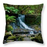 Waterfall In Deep Forest Throw Pillow by Ulrich Schade