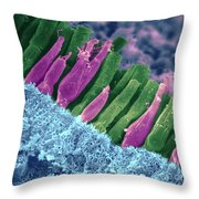 Rods And Cones In Retina Throw Pillow by Omikron