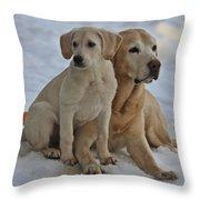 Yellow Labradors Throw Pillow by Steven Lapkin