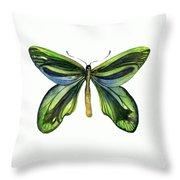 6 Queen Alexandra Butterfly Throw Pillow by Amy Kirkpatrick