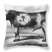 Cattle, 19th Century Throw Pillow by Granger