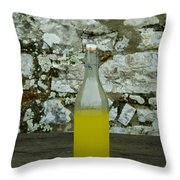 A Bottle Of Limoncello Sits On A Picnic Throw Pillow by Todd Gipstein