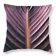 A Cut Above Throw Pillow by Gwyn Newcombe