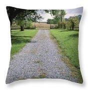 A Gravel Road Marks The Entranceexit Throw Pillow by Joel Sartore