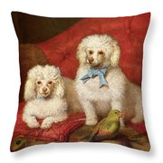 A Pair of Poodles Throw Pillow by English School