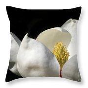 A Peek Inside A Magnolia Throw Pillow by Sabrina L Ryan