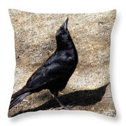 A Sighting Throw Pillow by Sandi OReilly