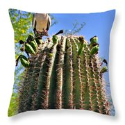 A Spiky Home Throw Pillow by Christine Till