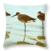 A Trio Throw Pillow by Christopher Holmes