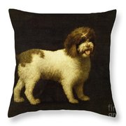 A Water Spaniel Throw Pillow by George Stubbs