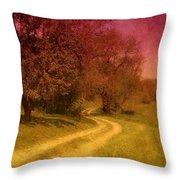 A Winding Road - Bayonet Farm Throw Pillow by Angie Tirado