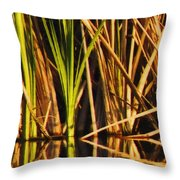 Abstract Reeds Triptych Top Throw Pillow by Steven Sparks