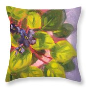African Violet Still Life Oil Painting Throw Pillow by Nancy Merkle