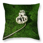 Aguished Leaf Throw Pillow by Douglas Barnett