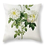 Aime Vibere Throw Pillow by Pierre Joseph Redoute