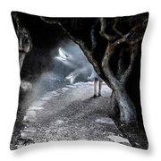 Alice In Wonderland Throw Pillow by Oleksiy Maksymenko