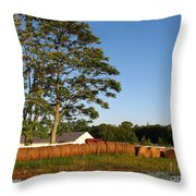 All In A Row Throw Pillow by Todd A Blanchard