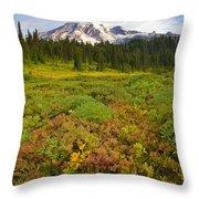 Alpine Meadows Throw Pillow by Mike  Dawson