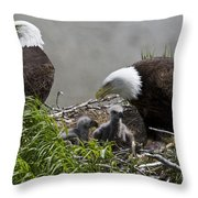 American Bald Eagles, Haliaeetus Throw Pillow by Roy Toft