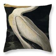 American White Pelican Throw Pillow by John James Audubon
