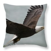 An American Bald Eagle Soaring Throw Pillow by Roy Toft