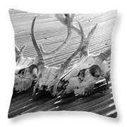 Antlers on Tin Roof Throw Pillow by Thomas R Fletcher