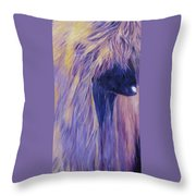 Apache Throw Pillow by Terry  Chacon