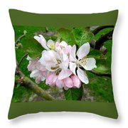 Apple Blossom Throw Pillow by Joyce Woodhouse