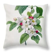 Apple Blossom Throw Pillow by Pierre Joseph Redoute