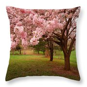 Approach Me - Holmdel Park Throw Pillow by Angie Tirado