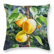 Apricots In The Garden Throw Pillow by Irina Sztukowski