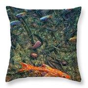 Aquarium 2 Throw Pillow by James W Johnson