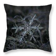 Snowflake 2 Of 19 March 2013 Throw Pillow by Alexey Kljatov