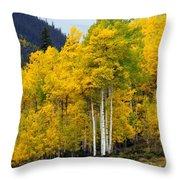 Aspen Fall 3 Throw Pillow by Marty Koch