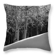 Aspencade Throw Pillow by Skip Hunt