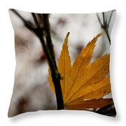 At Rest Throw Pillow by Mike Reid
