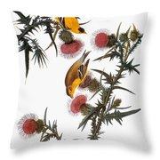 Audubon: Goldfinch Throw Pillow by Granger