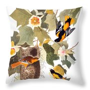 Audubon: Oriole Throw Pillow by Granger