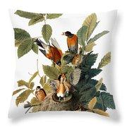 Audubon: Robin Throw Pillow by Granger
