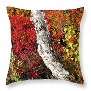 Autumn Foliage In Finland Throw Pillow by Heiko Koehrer-Wagner