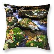 Autumn Monongahela National Forest Throw Pillow by Thomas R Fletcher