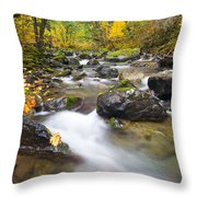 Autumn Passing Throw Pillow by Mike  Dawson