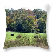 Autumn Pastures Throw Pillow by Jan Amiss Photography