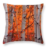 Autumn Splendor Throw Pillow by Don Schwartz