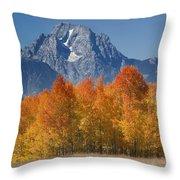 Autumn Splendor In Grand Teton Throw Pillow by Sandra Bronstein