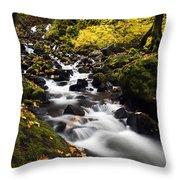 Autumn Swirl Throw Pillow by Mike  Dawson
