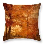 Autumn Tapestry - Lake Carasaljo Throw Pillow by Angie Tirado