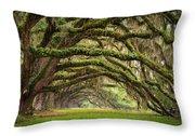 Avenue Of Oaks - Charleston Sc Plantation Live Oak Trees Forest Landscape Throw Pillow by Dave Allen