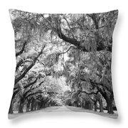 Avenue Of Oaks Charleston South Carolina Throw Pillow by Stephanie McDowell